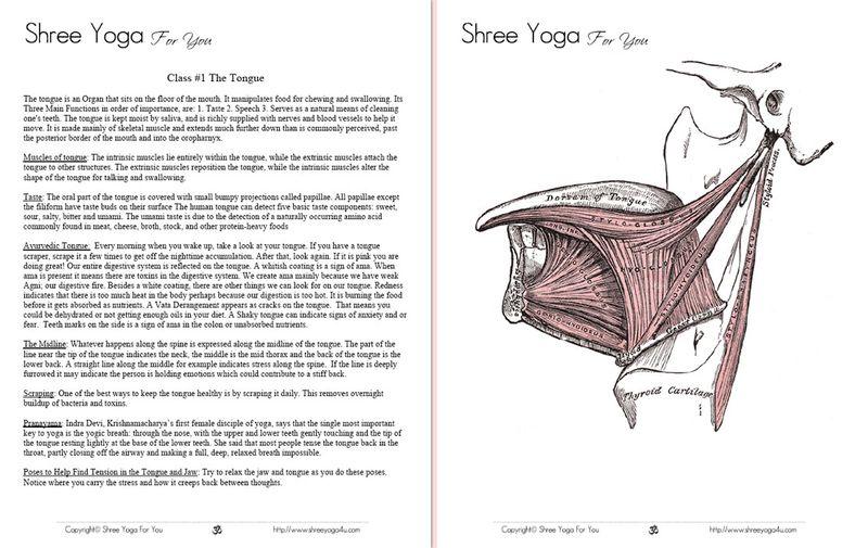 Shree_yoga_lesson_plan_example1